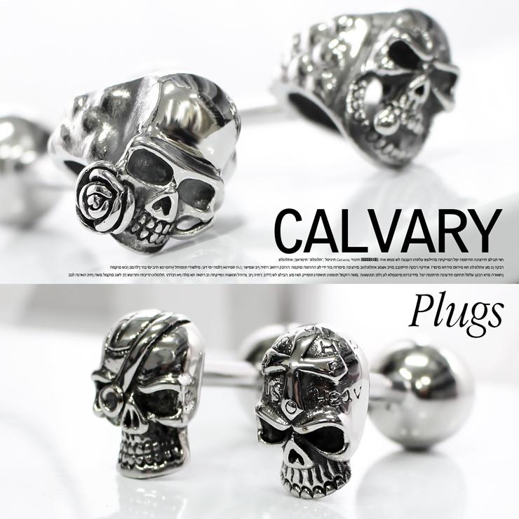 CALVARY plugs カルバリープラグ